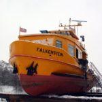 """""""Falkenstein"""" am 12.01.10_2"""