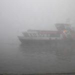 Harmonie im Nebel