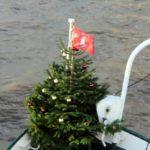 Weihnachtsbaum für die KIRCHDORF 2015_2