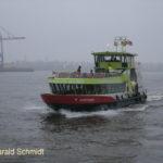 Oortkaten (2009) 045 am 22.11.2011_1