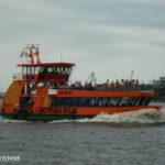 Tollerort (2006) 002 am 28.5.2008